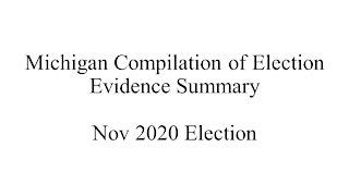 Michigan Election Evidence