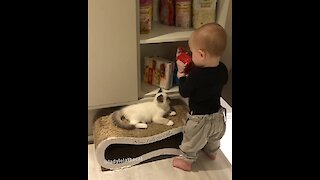 Kid gives unlimited treats to kitty best friend
