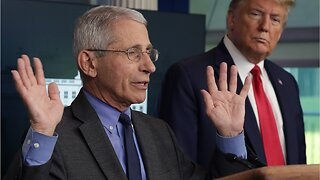 """Director of Italian Hospital Says Italy Would Welcome Dr. Fauci """"With Open Arms"""""""