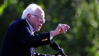 Bernie Sanders' California base split with new progressive candidates