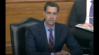 """Tom Cotton Grills Biden Nominee On """"Divisive"""" Critical Race Theory Training-1707"""