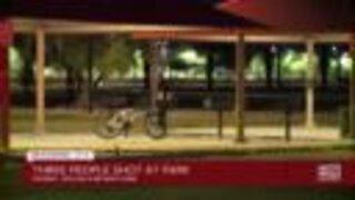 Three people shot at Phoenix park
