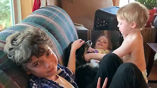 Kids Roughhousing With the Dog