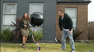 Twins Gender Reveal Results In Epic Conclusion