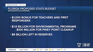 About Florida's proposed state budget