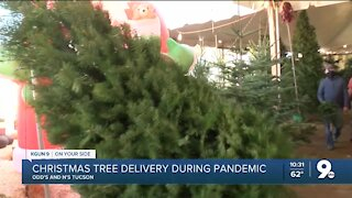Local business delivers Christmas trees during ongoing pandemic