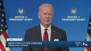 Biden details first 100 days as president