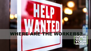 Labor Shortage: Where are the Workers?
