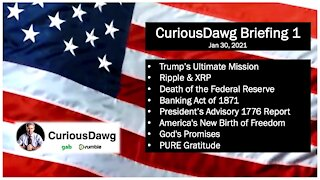 CuriousDawg Briefing 1 - Jan, 30, 2021