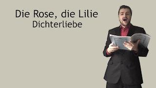 Die Rose, die Lilie - Dichterliebe - Robert Schumann