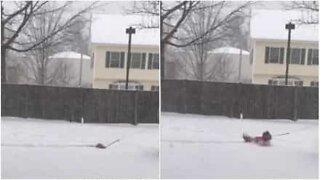 Snön är för djup för den lilla jycken!