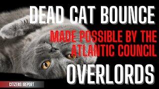 Dead Cat Bounce & Atlantic Council Overlords