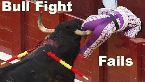 Bullfighting festival funny crazy bull fails funny videos