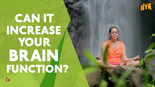 How Meditation actually improves your memory power?