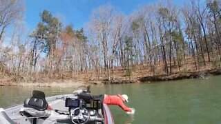 Fisherman dives in headfirst to catch fish