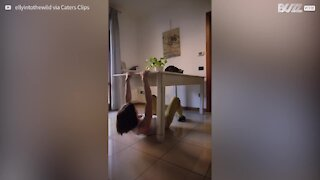 Confinement: cette grimpeuse s'attaque à ses meubles !