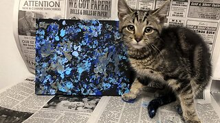 Paw-casso! Cute Pics Show Kittens Painting To Help Them Find A New Home