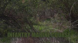 Interviews Marines navigate their way through Week 4 of IMC