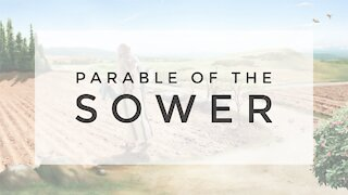 8.19.20 Wednesday Lesson - THE PARABLE OF THE SOWER