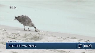 Red Tide warnings issued for areas of Lee County