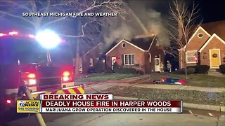 Firefighters find marijuana grow operation while battling deadly fire in Harper Woods