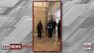 Capitol Building Footage 3 - 2209