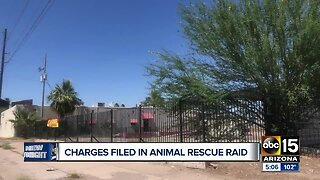 Charges filed in Phoenix animal rescue raid