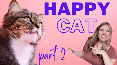 How To Raise A Happy Healthy Cat | Happy Cat Month September 2021 | Part 2