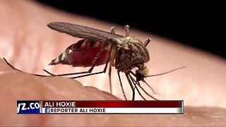 2 recent deaths from mosquito-borne disease reported in Michigan