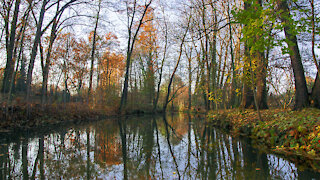 Autumn in the Spreewald
