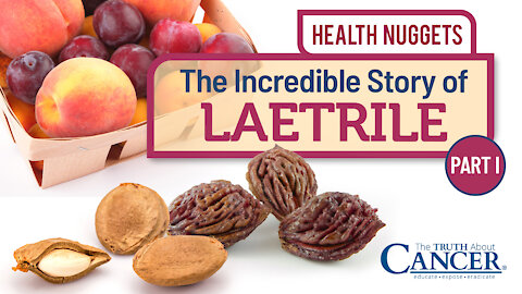 The Truth About Cancer Presents: Health Nuggets - The Incredible Story of Laetrile   Part I
