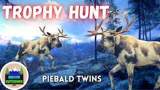 Trophy Hunt - Twin Piebald Moose: The Hunter Call of the Wild