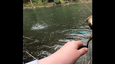 The Spot: Trout Fishing