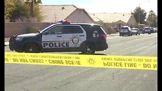 Las Vegas police offer Spring Valley residents burglary prevention tips