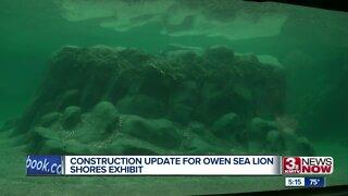 Zoo leaders provide update on progress of sea lion exhibit