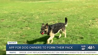 App for dog owners to form their pack