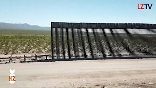 How could the 2020 Election affect the Wall