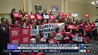 Groups Urge Maryland Lawmakers to Pass Gun Safety Legislation