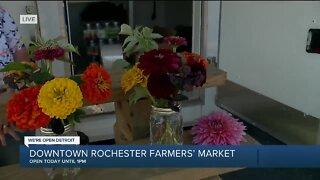 Rochester Farmer's Market