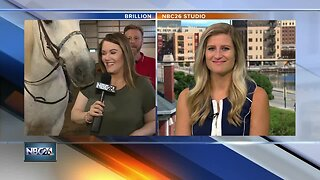 Helping Horses help people fund raising event