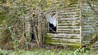 Davis Road House - Abandoned