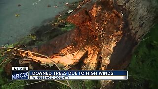 Storm Damage in Winnebago County