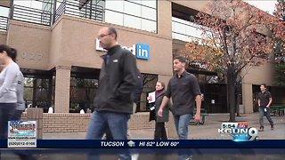 LinkedIn Learning Survey, Top complaints about bosses