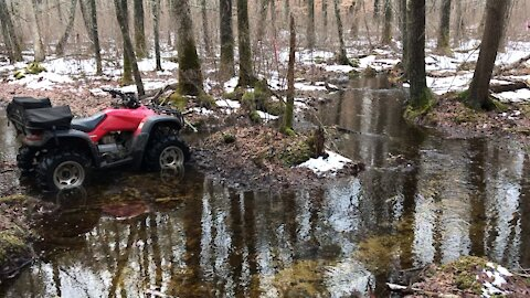 Swamp ride