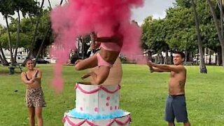 This gender reveal is straight-up hilarious!
