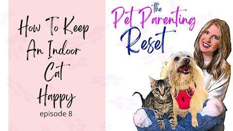 How To Keep An Indoor Cat Happy | The Pet Parenting Reset episode 8