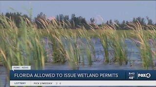 Florida allows issue wetland permits