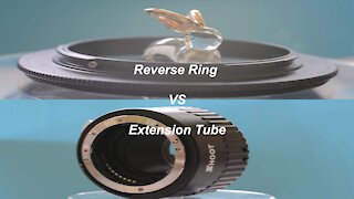 Reverse ring Vs Extension Tube for macro photography