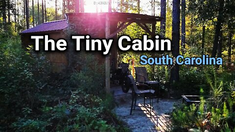 My little cabin in the woods