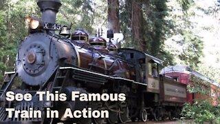 FAMOUS Skunk Train Fort Bragg California